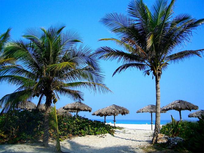 Жизнь в раю, на пляже под пальмой с ноутбуком, работая на себя