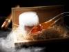 gaggan-cuisine-13-lq