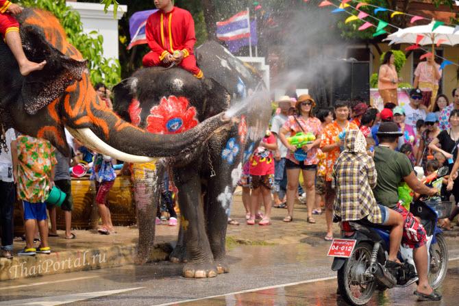 празднование Сонгкрана со слонами в Аюттайе