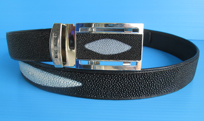 stingray_belt_01