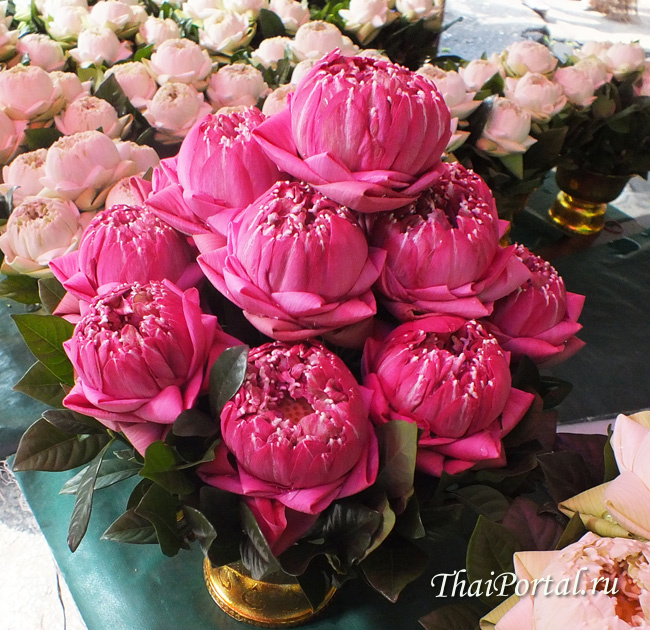 unofficial_bangkok_06