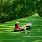 The Pros & Cons of Living in Vietnam as an Expat