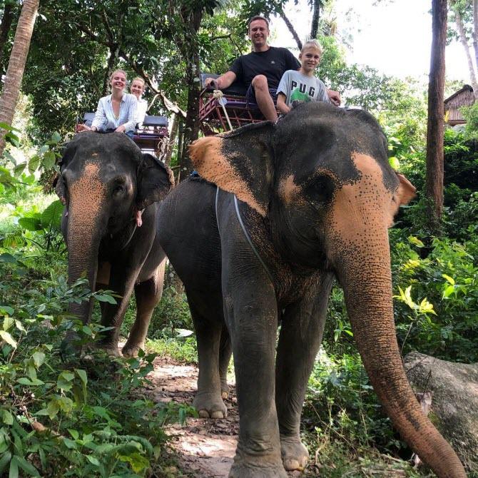 Алексей Навальный с семьей катается на слонах в Таиланде